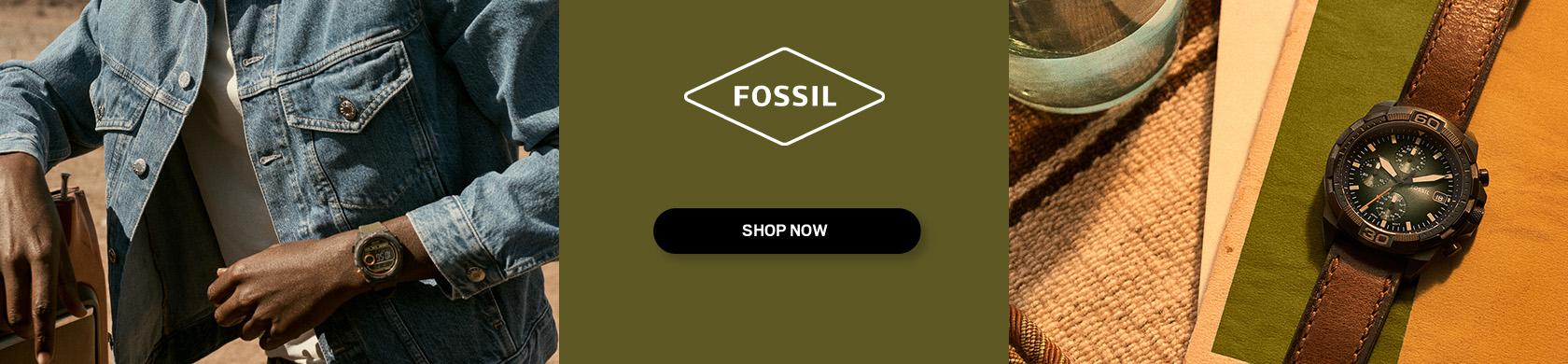 Fossil Fall Bronson